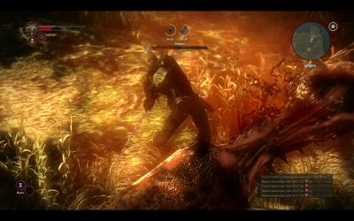 Обзор The Witcher 2: Assassins of Kings